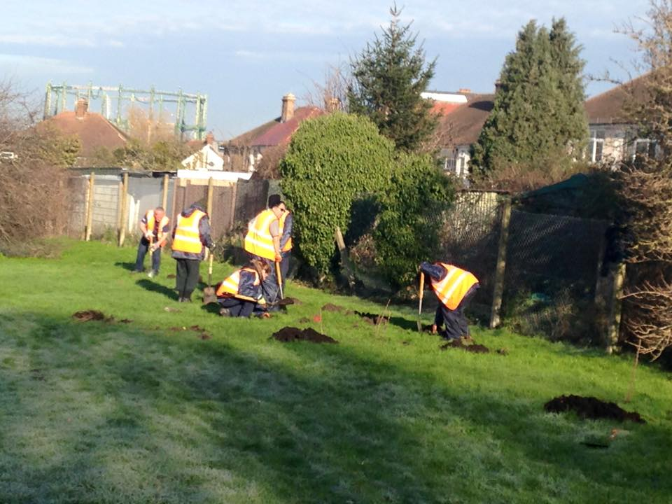 16jan18_volunteers-planting-hedge-brickfield.jpg