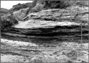 sands and gravels in cliff