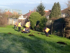 16jan18_volunteers planting hedge brickfield