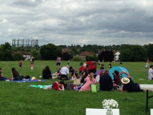 groups of people having picnics on the park