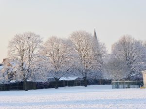 spire of church behind frost rimmed trees